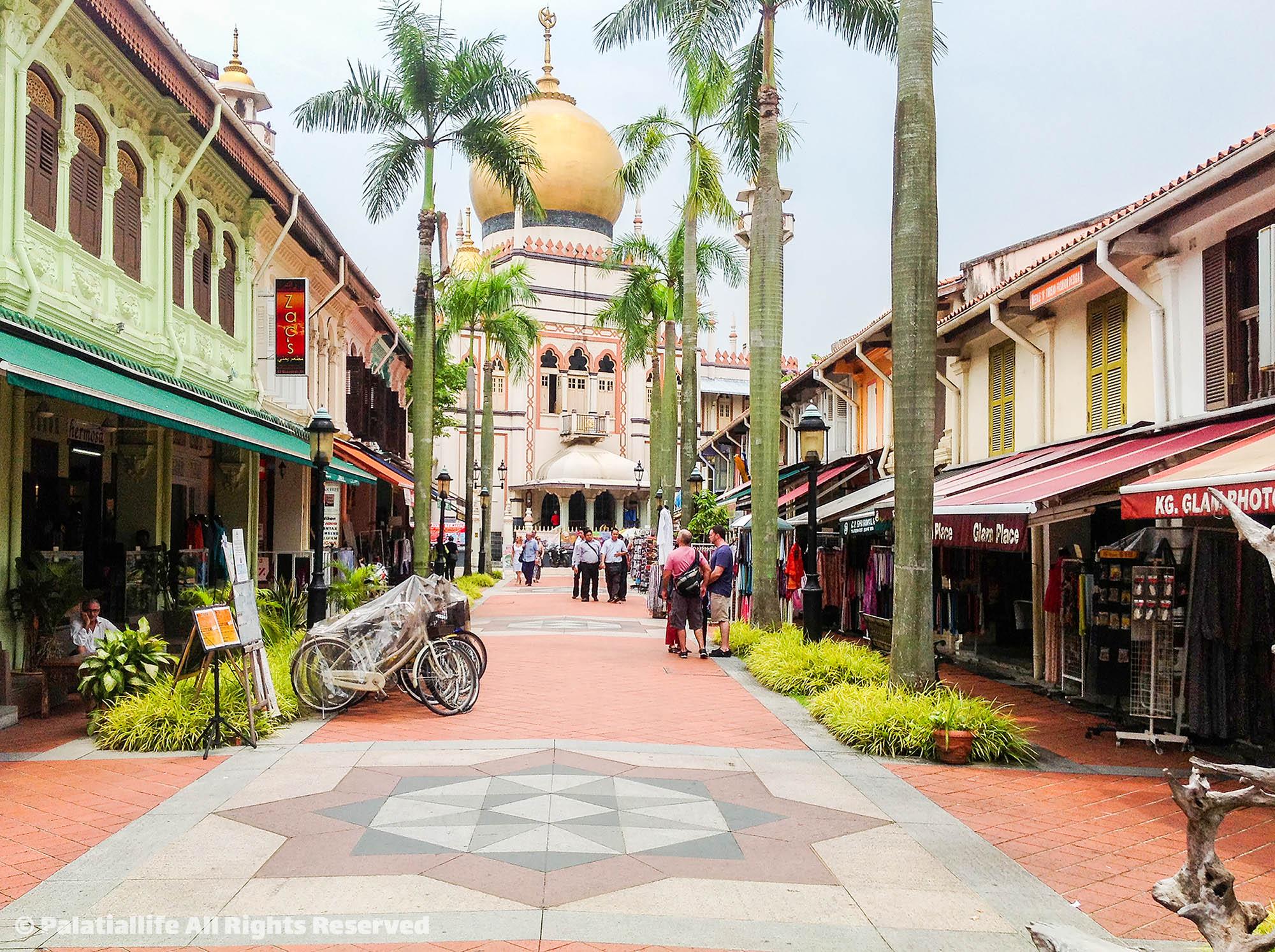 ตรอกฮาจิ Haji Lane อาหรับสตรีท สิงคโปร์  สิงคโปร์ เที่ยวเตร็ดเตร่ไปตาม 5 ย่านยอดฮิตที่ไม่ควรพลาด IMG 3339