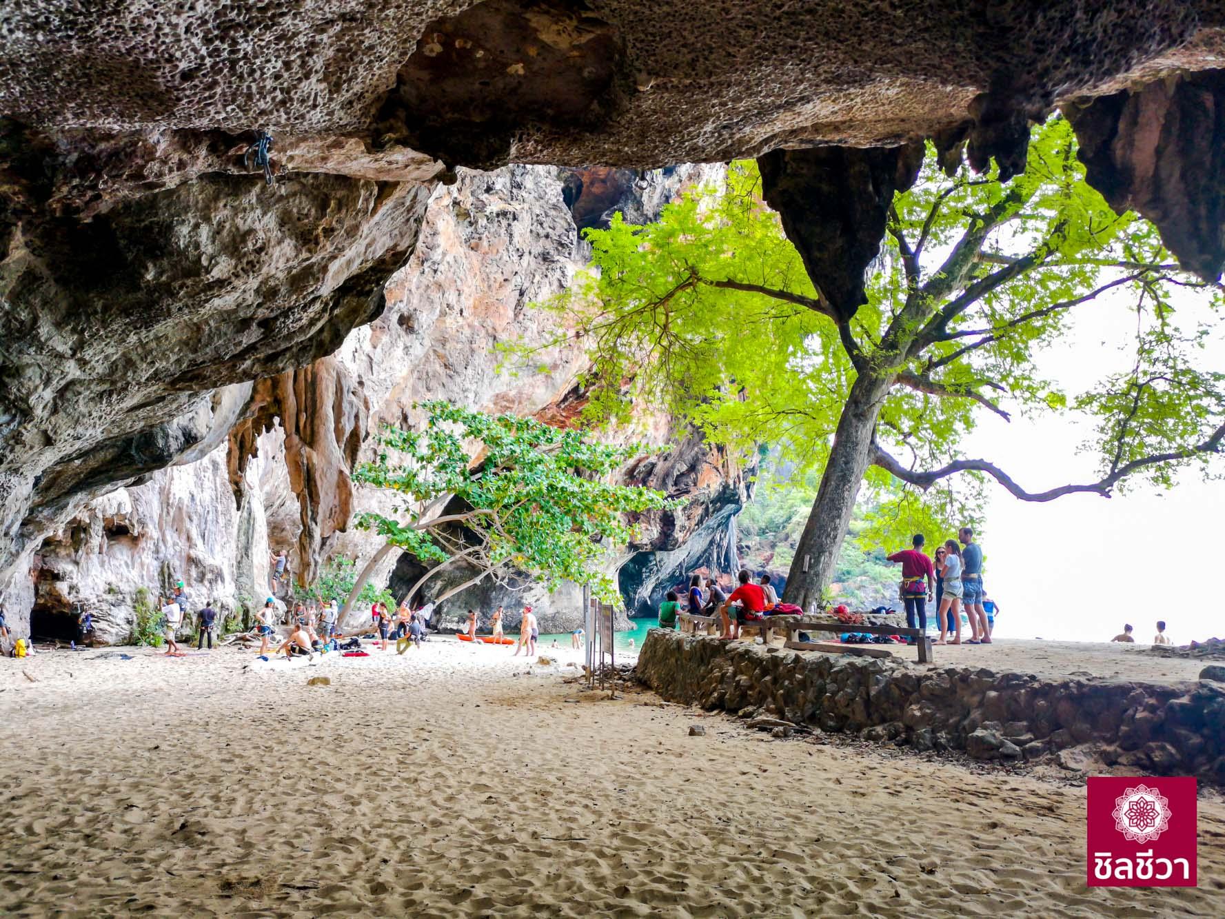 ซันไรท์ ทรอปิคอล รีสอร์ท (Sunrise Tropical Resort) ไร่เลย์ กระบี่  ซันไรท์ ทรอปิคอล รีสอร์ท รีสอร์ทงามๆ บนเกาะไร่เลย์ กระบี่ IMG 20181011 112548