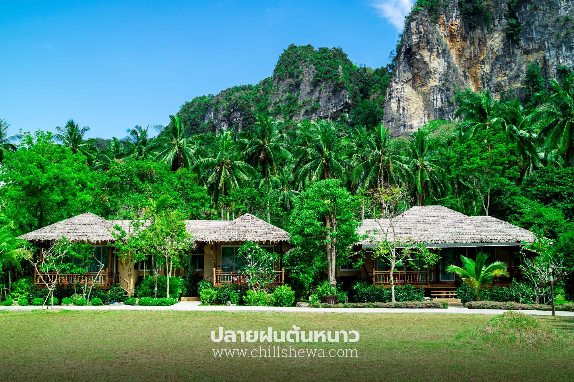 บ้านใสใน รีสอร์ท BAAN SAINAI RESORT  บ้านใสใน รีสอร์ท Ban Sainai Resort อ่าวนาง กระบี่                                                BAAN SAINAI RESORT 06